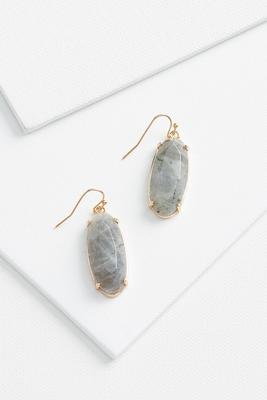 ovular stone earrings
