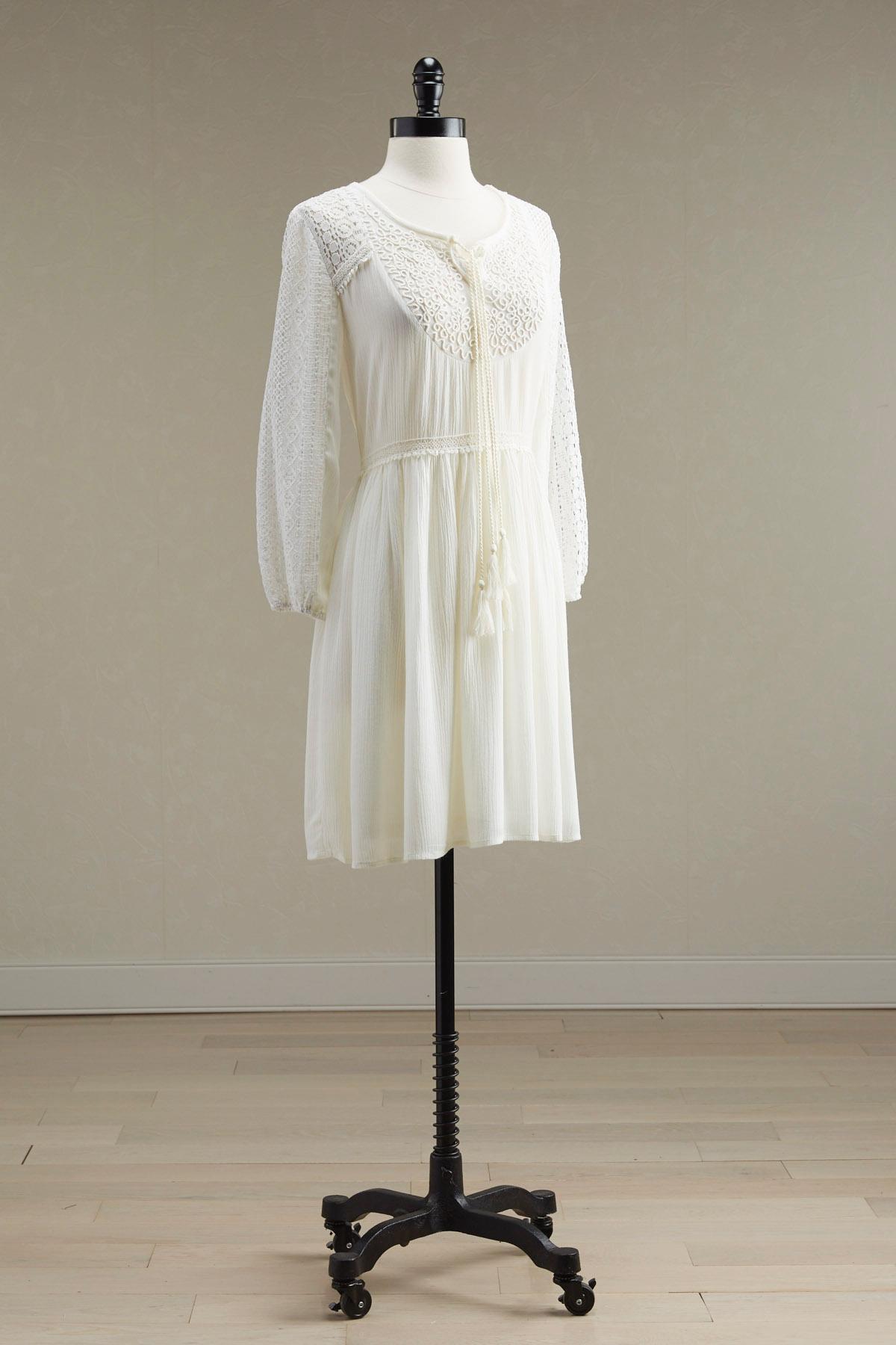 Embroidered Bib Babydoll Dress