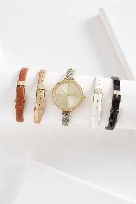 interchangeable band watch