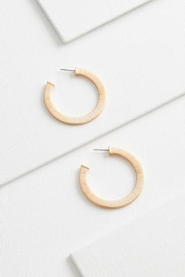flat brushed metal hoops