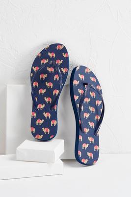 camel flip-flops