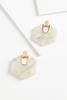 Lucite Hexagon Earrings