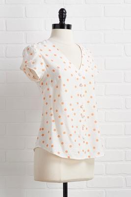tulips in bloom top