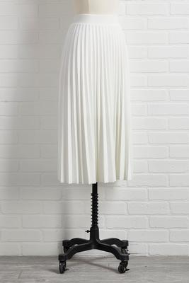 pleats don`t go skirt