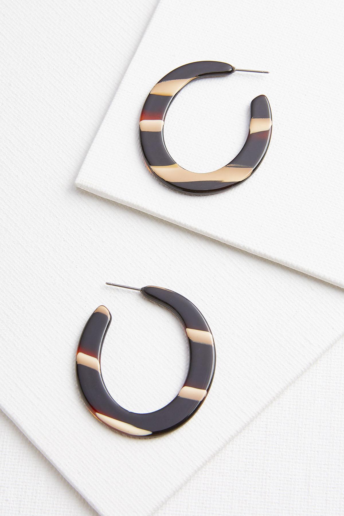 Lucite Stripe Earrings