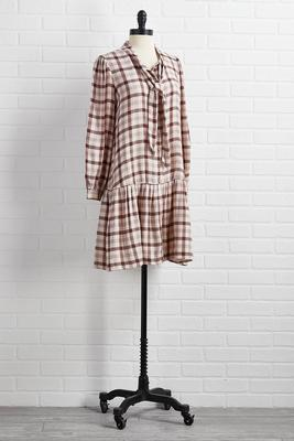 sippin` cider flannel dress