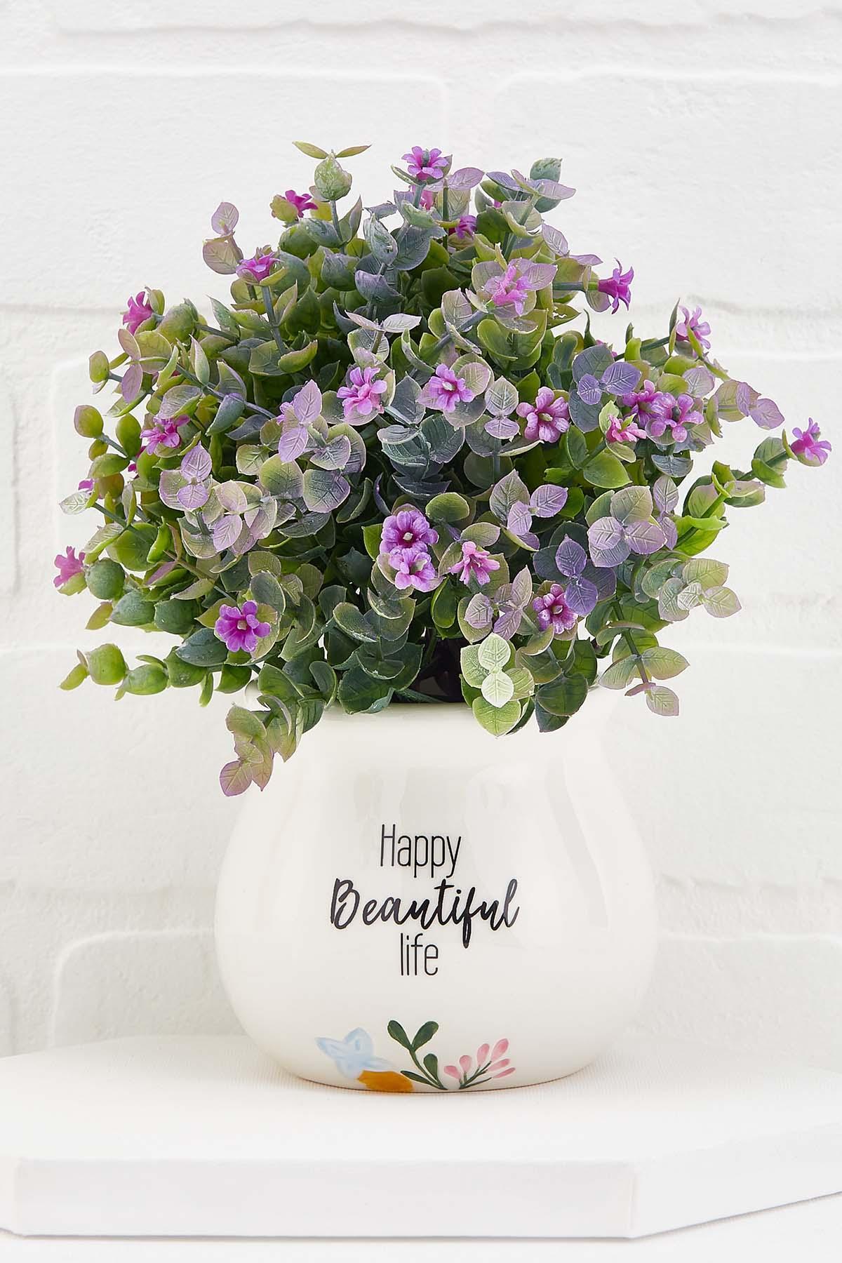 Happy Beautiful Life Plant