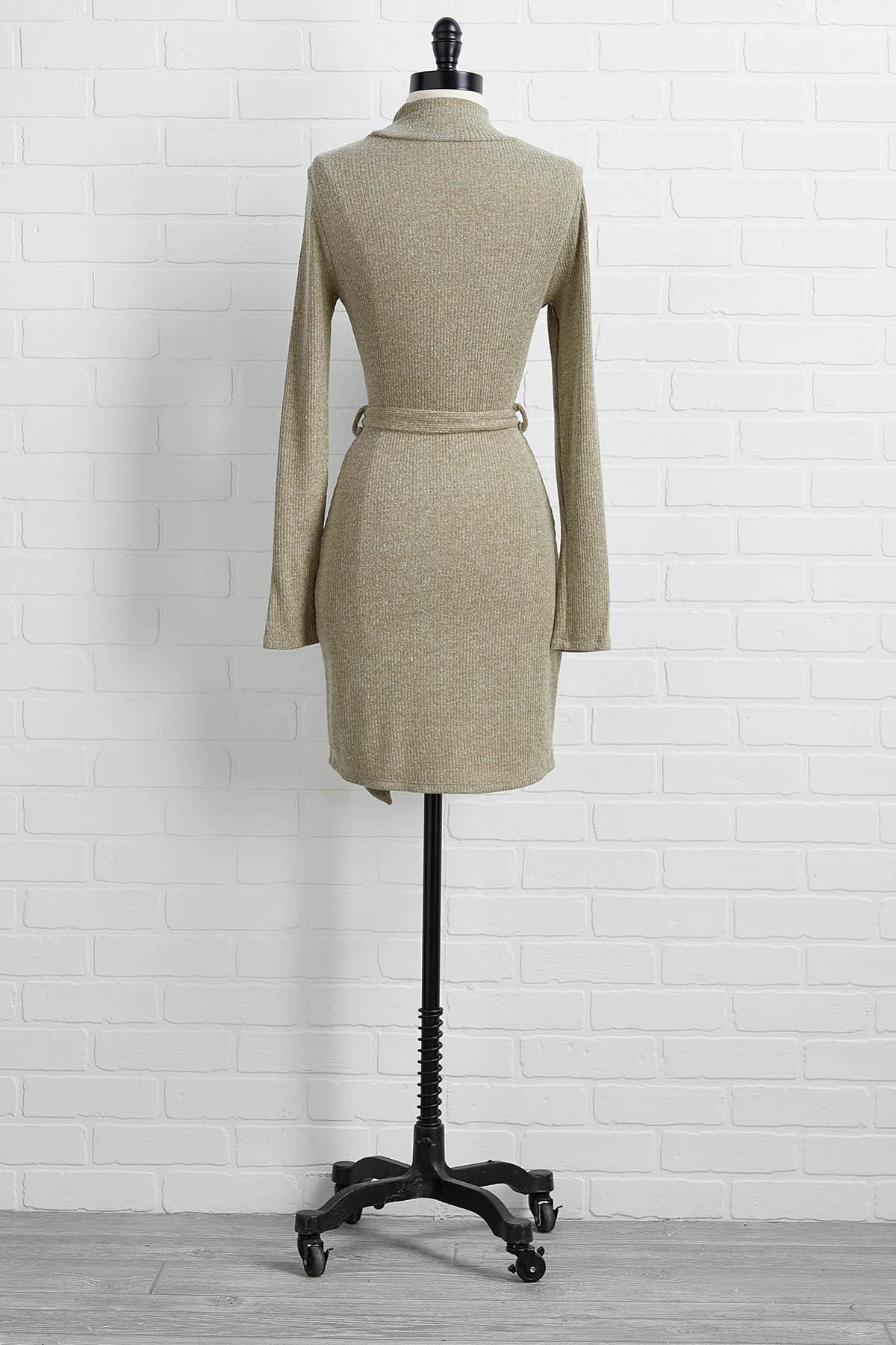 Asking For Knit Dress