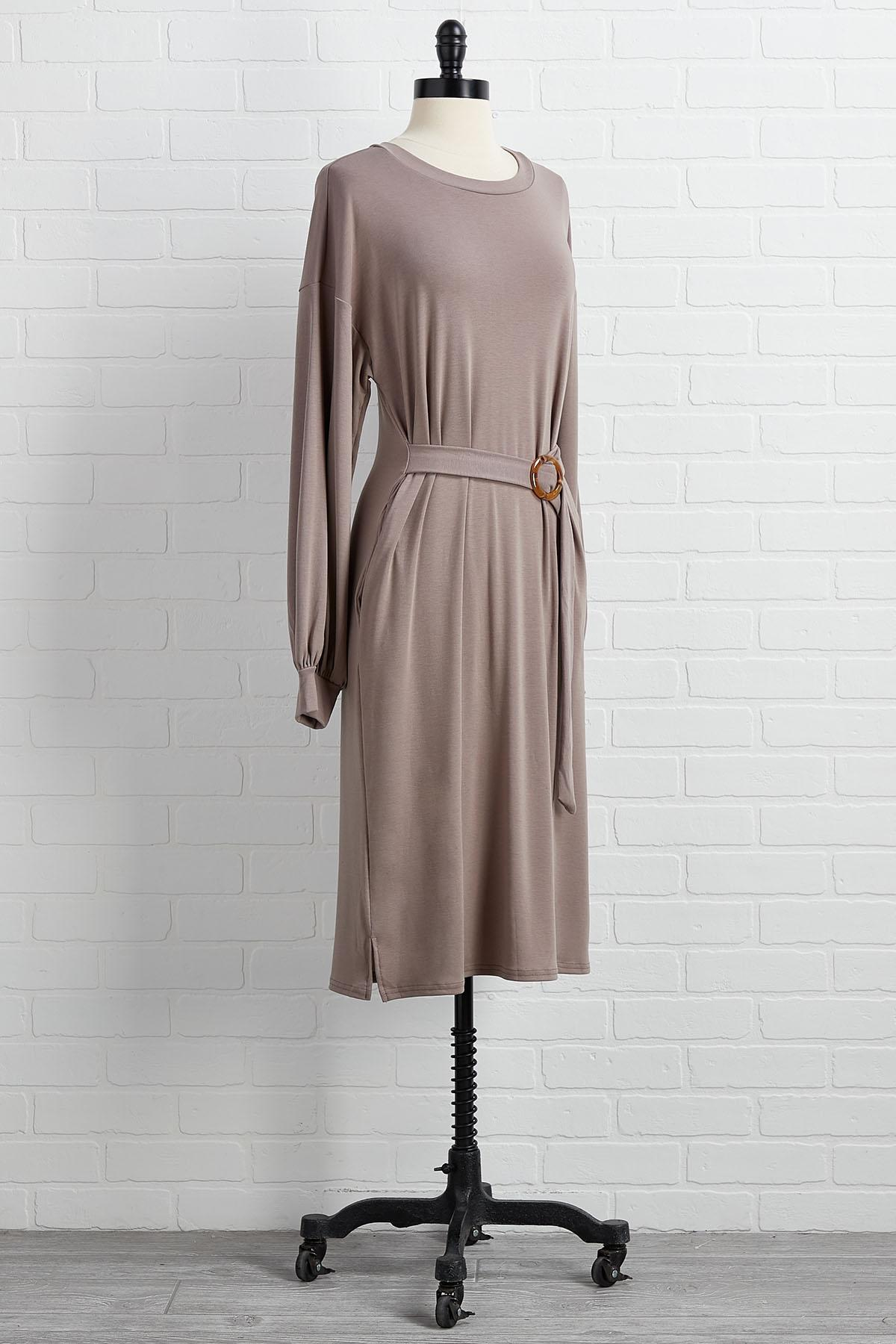 Buckle Your Seat Belted Dress