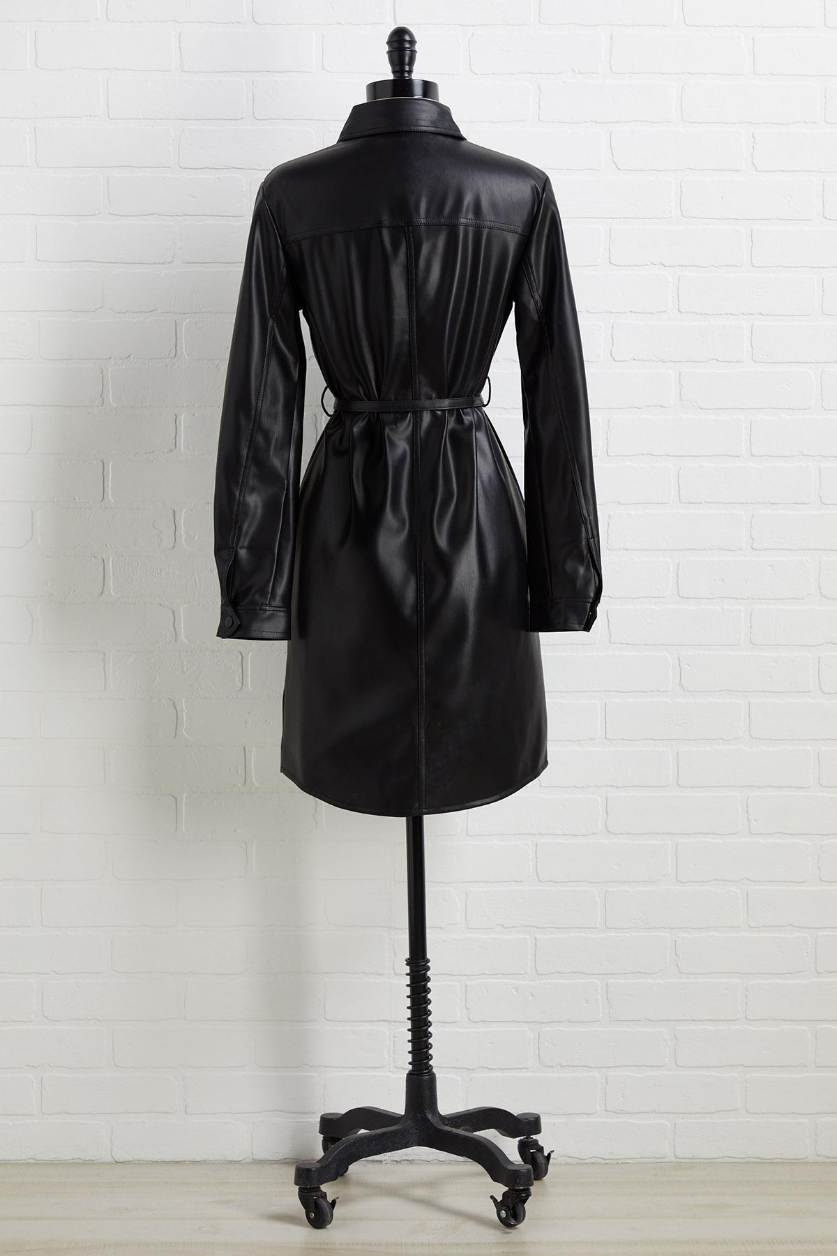 Check The Leather Dress